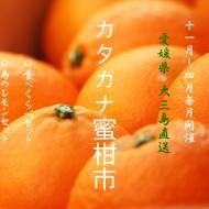 IMG_7211ポスター